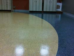commercial tile cleaning for business in Mississauga, Oakville, Burlington and the Greater Toronto Area